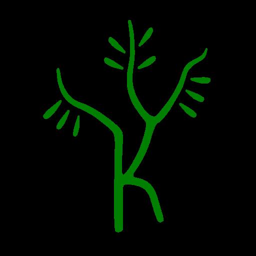 Lapithos Olive Growers
